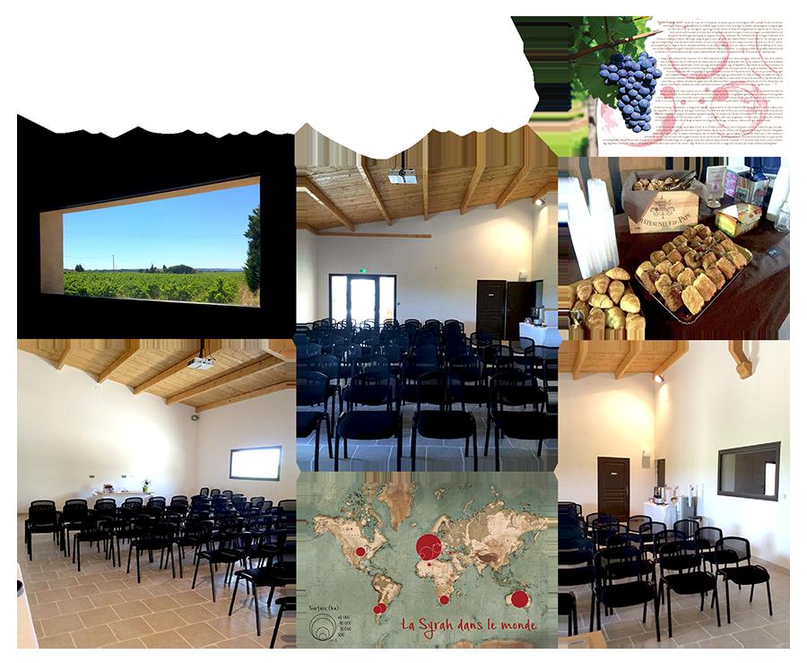 Salle Syrah